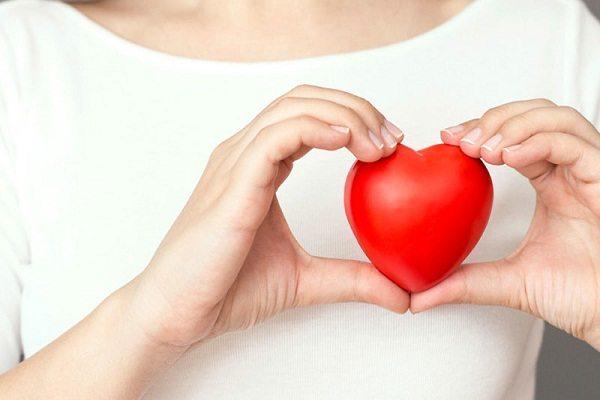 gyömbér hatása szívre